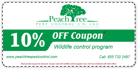 Peachtree Pest Control coupon